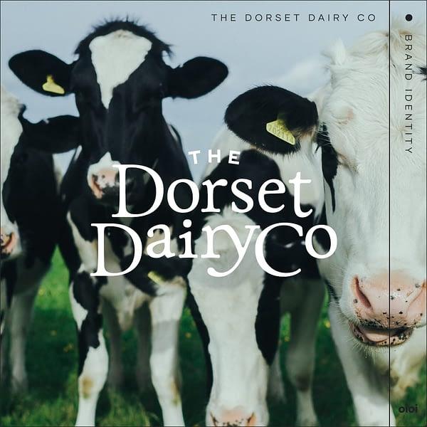 oioi-tddcidentity-cows