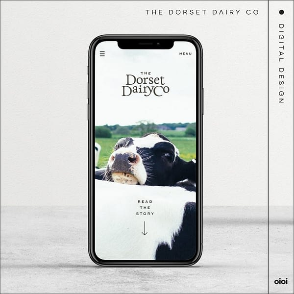 the dorset dairy co - digital design