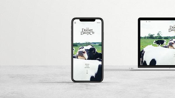 The Dorset Dairy Co // Digital