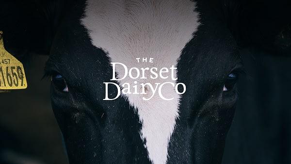 The Dorset Dairy Co // Brand Identity